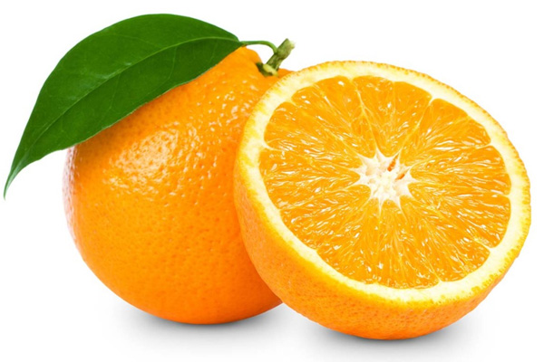 Can My Dog Eat Oranges